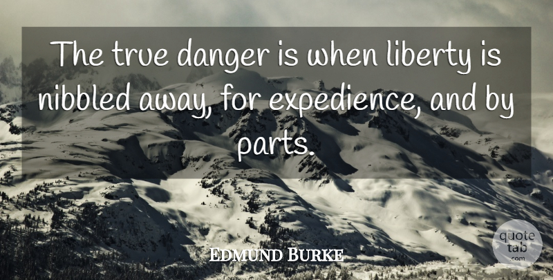 Edmund Burke Quote About Liberty, Libertarian, Internet: The True Danger Is When...