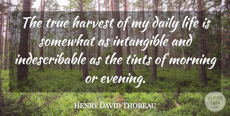 Henry David Thoreau Quote About Happiness, Morning, Evening: The True Harvest Of My...