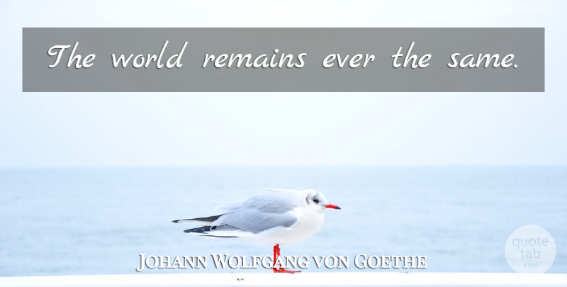 Johann Wolfgang von Goethe Quote About Literature, World, Remains: The World Remains Ever The...