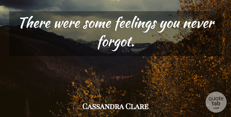Cassandra Clare Quote About Feelings: There Were Some Feelings You...