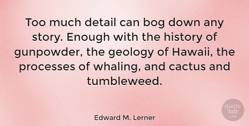 Edward M. Lerner Quote About Geology, History, Processes: Too Much Detail Can Bog...