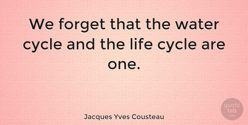 Jacques Yves Cousteau We Forget That The Water Cycle And The Life