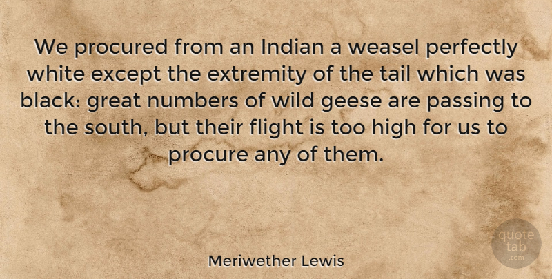 Meriwether Lewis Quote About Except, Extremity, Flight, Great, High: We Procured From An Indian...
