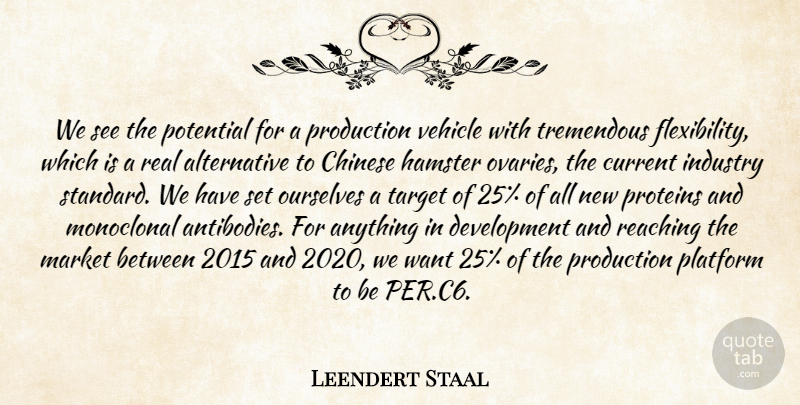 Leendert Staal Quote About Chinese, Current, Industry, Market, Ourselves: We See The Potential For...