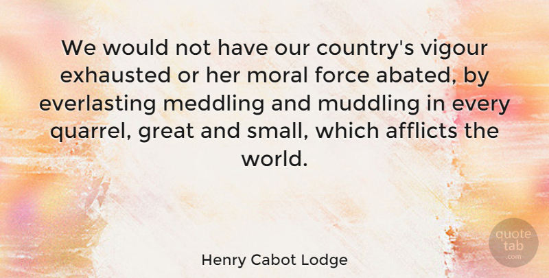 Henry Cabot Lodge Quote About Afflicts, Exhausted, Force, Great, Meddling: We Would Not Have Our...