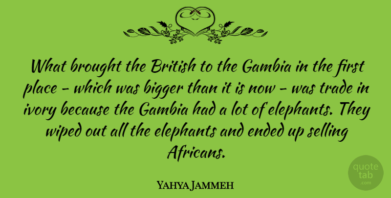 Yahya Jammeh Quote About Brought, Elephants, Ended, Ivory, Trade: What Brought The British To...