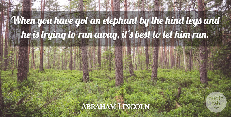 Abraham Lincoln Quote About Running, Acceptance, Elephants: When You Have Got An...