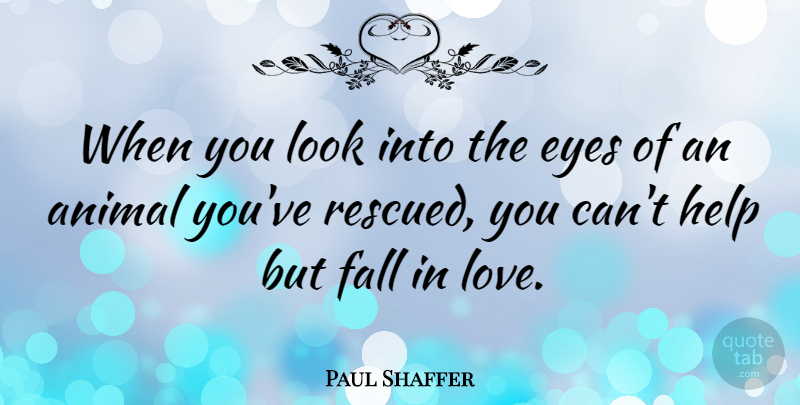 Paul Shaffer Quote About Animal, Eyes, Fall, Help, Love: When You Look Into The...
