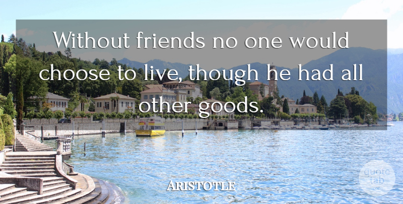 Aristotle Quote About Inspirational, Friendship, Philosophical: Without Friends No One Would...