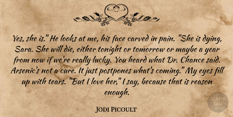 Jodi Picoult Quote About Pain, Eye, Years: Yes She Is He Looks...
