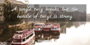 Being Strong Quotes, Tecumseh Quote About Strength, Being Strong, Break: A Single Twig Breaks But...