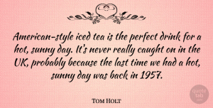 Tom Holt Quote About Perfect, Tea, Style: American Style Iced Tea Is...