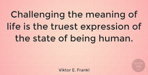 Motivational Quotes, Viktor E. Frankl Quote About Motivational, Expression, Challenges: Challenging The Meaning Of Life...
