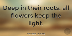 Nature Quotes, Theodore Roethke Quote About Nature, Attitude, Flower: Deep In Their Roots All...