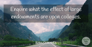 Ezra Cornell Quote About American Businessman, Large: Enquire What The Effect Of...