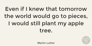 Wisdom Quotes, Martin Luther Quote About Faith, Hope, Wisdom: Even If I Knew That...