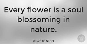 Nature Quotes, Gerard De Nerval Quote About Nature, Flower, Tree: Every Flower Is A Soul...