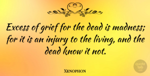 Xenophon Quote About Dead, Excess, Injury, Sympathy: Excess Of Grief For The...
