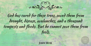 Nature Quotes, John Muir Quote About Nature, Sea, Tree: God Has Cared For These...