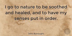Nature Quotes, John Burroughs Quote About Music, Nature, Health: I Go To Nature To...