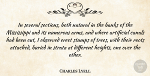 Artificial Quotes, Charles Lyell Quote About Artificial, Banks, Both, Buried, Canals: In Several Sections Both Natural...