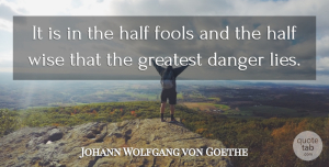 Lying Quotes, Johann Wolfgang von Goethe Quote About Wise, Lying, Fool: It Is In The Half...