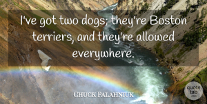 Chuck Palahniuk Quote About Allowed, Boston: Ive Got Two Dogs Theyre...