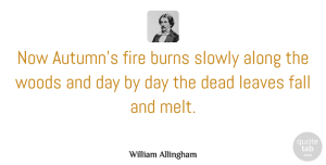 Fire Quotes, William Allingham Quote About Fall, Autumn, Fire: Now Autumns Fire Burns Slowly...