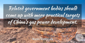Wang Yonggan Quote About Bodies, Gas, Government, Power, Practical: Related Government Bodies Should Come...