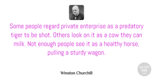 Winston Churchill Quote About Inspirational, Horse, Business: Some People Regard Private Enterprise...
