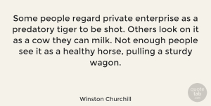 Business Quotes, Winston Churchill Quote About Inspirational, Horse, Business: Some People Regard Private Enterprise...