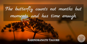 Time Quotes, Rabindranath Tagore Quote About Time, Memories, Butterfly: The Butterfly Counts Not Months...
