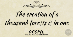 Hope Quotes, Ralph Waldo Emerson Quote About Inspirational, Positive, Hope: The Creation Of A Thousand...