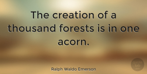 Positive Quotes, Ralph Waldo Emerson Quote About Inspirational, Positive, Hope: The Creation Of A Thousand...