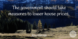 Xiao Zhuoji Quote About Government, House, Lower, Measures: The Government Should Take Measures...
