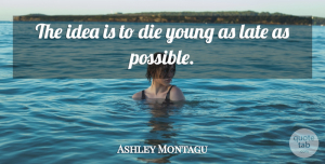 Death Quotes, Ashley Montagu Quote About Death, Ideas, Eulogy: The Idea Is To Die...