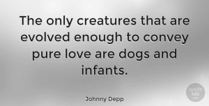 Love Quotes, Johnny Depp Quote About Love, Dog, Baby: The Only Creatures That Are...