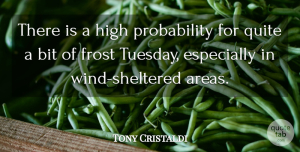 Tony Cristaldi Quote About Bit, Frost, High, Quite: There Is A High Probability...