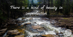 Conrad Hall Quote About American Artist, Beauty: There Is A Kind Of...