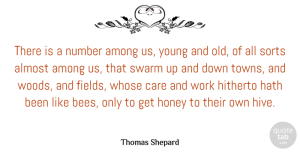 Almost Quotes, Thomas Shepard Quote About Almost, Among, Hath, Hitherto, Honey: There Is A Number Among...