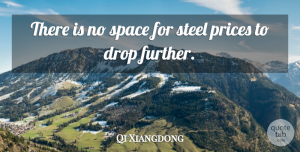 Qi Xiangdong Quote About Drop, Prices, Space, Steel: There Is No Space For...