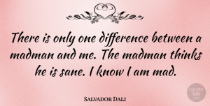 Artist Quotes, Salvador Dali Quote About Clever, Thinking, Artist: There Is Only One Difference...