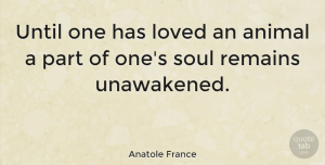 Love Quotes, Anatole France Quote About Love, Inspiring, Dog: Until One Has Loved An...