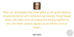 Stars Quotes, John Muir Quote About Beauty, Nature, Stars: When We Contemplate The Whole...
