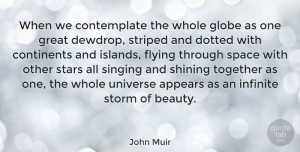 Nature Quotes, John Muir Quote About Beauty, Nature, Stars: When We Contemplate The Whole...